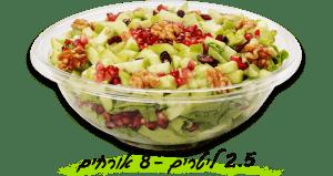 סלט עלים פירות ואגוזים 2.5 ליטר